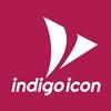 Mobile & Web Development Company – Indigo Icon USA