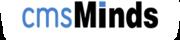 Professional Web Design & Development Company in USA